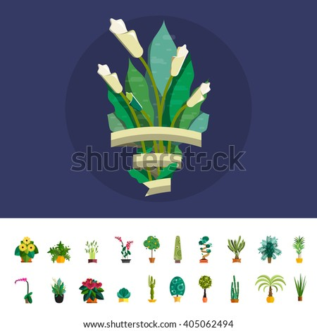 Cute bouquet of calla lily. Wedding calla lily bouquet flowers, birthday bouquet flowers, vector illustration calla lily in flat design. Plant bouquet for event. Flower bouquet with ribbon for text.