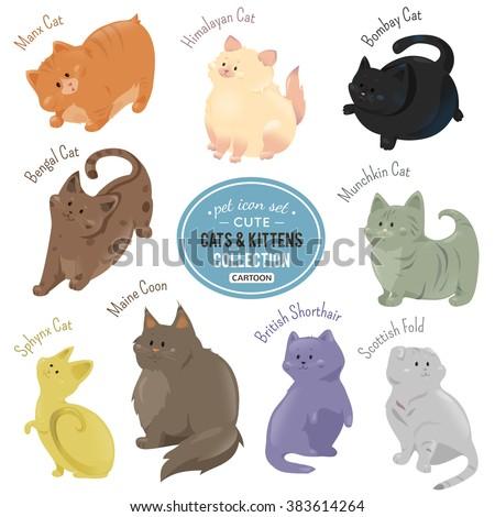 Cute cats and kittens icons. Vector cat. Cat illustration. Flat cat. Cat sign. Comic cat. Funny cat. Cat pet. Cartoon cat. Drawing cat. Cat design. Cat isolated Different cat. Adorable cat. Bright cat - stock vector
