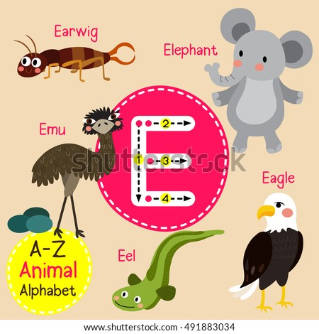 Baby Eagle Stock Images Royalty Free Images Vectors Shutterstock