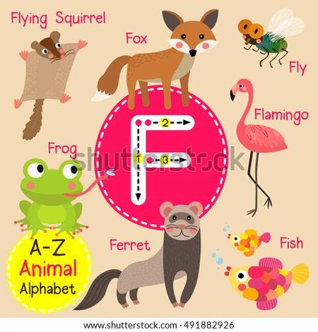 English Animal Alphabet Kids - download.cnet.com