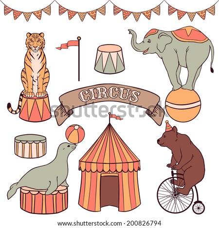 Cute circus animals set: tiger, elephant, seal, bear - stock vector