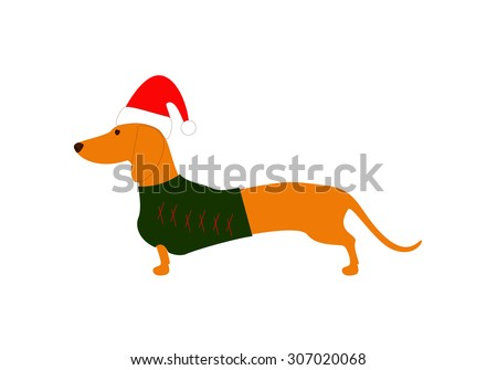 Cute dachshund wearing Christmas suit, green jersey decorated with red stripes and red hat - stock vector