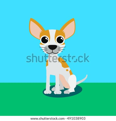 Cute dog of breed Chihuahua sitting action.
