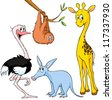 cute exotic animal - giraffe, sloth, ostrich and aardvark - stock vector