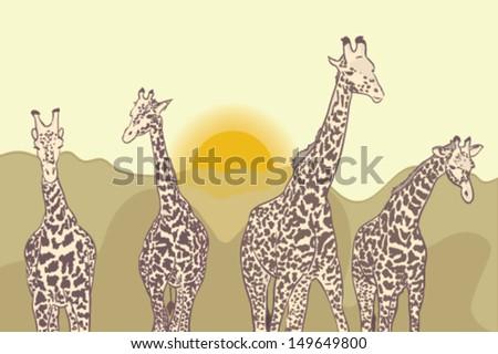 Cute family of giraffes on the walk during sunset - stock vector