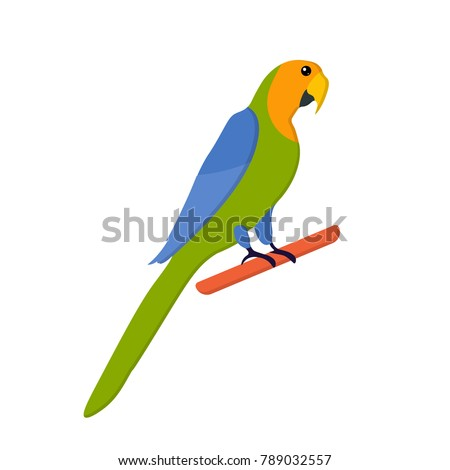 Cute funny blue and green flat parrot sitting on branch, Exotic bird isolated on white background. Summer tropical graphic element. Tropical animal. Home pet. Flat vector illustration.