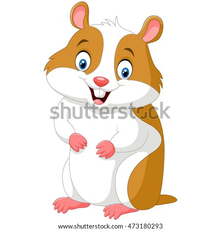 Cute hamster isolated on white background