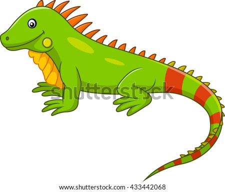 Iguana Stock Images Royalty Free Images Amp Vectors