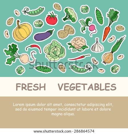 Cute illustration with hand drawn fresh vegetables. Card with fresh food. Vector icons for use in design - stock vector