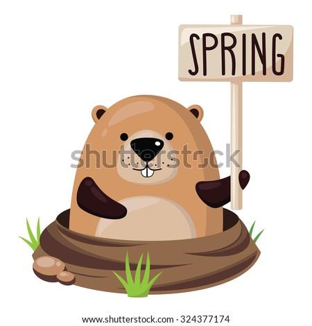 Cute marmot.Vector illustration. - stock vector