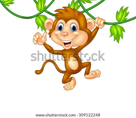 Cute monkey hanging giving thumb up  - stock vector
