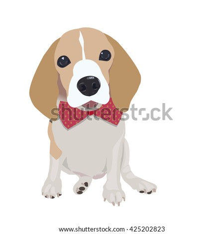 Cute Queen Elizabeth Pocket beagle with red bow on white background,vector illustration