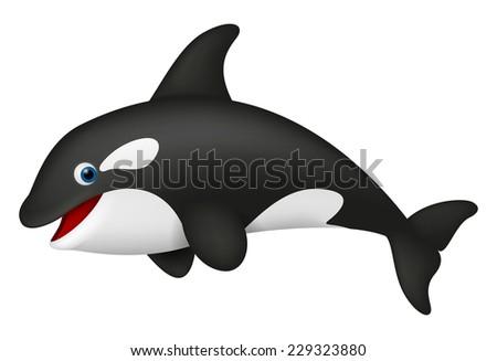 Cute realistic killer whale  - stock vector