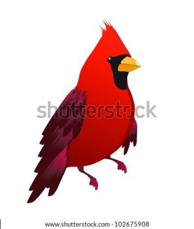 Cute red cardinal bird illustration - stock vector
