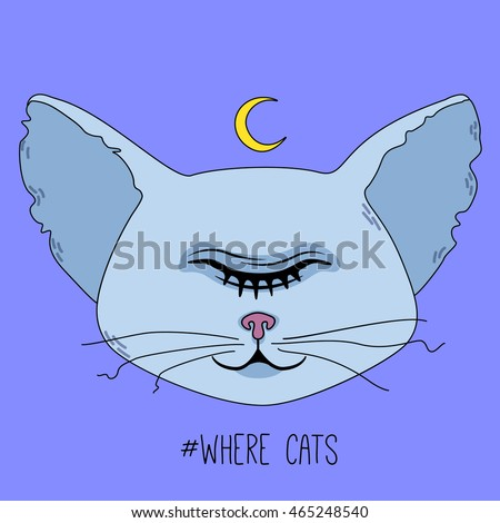 Cute sleeping cat head with one closed eye and moon on colorful background. Vector flat illustration.