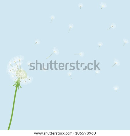 Cute vector blow dandelion on blue background - stock vector
