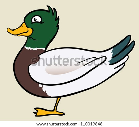 cute vector duck isolated - stock vector