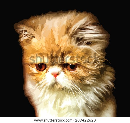 Cute white and orange Persian breed kitten isolated on black background. Vector eps10.