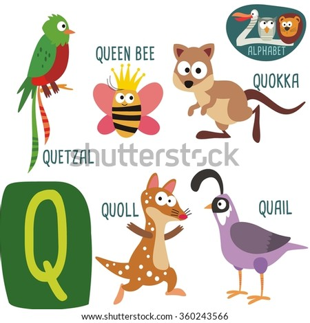 animal with letter q zoo alphabet vector q letter stock vector 360243566 4782