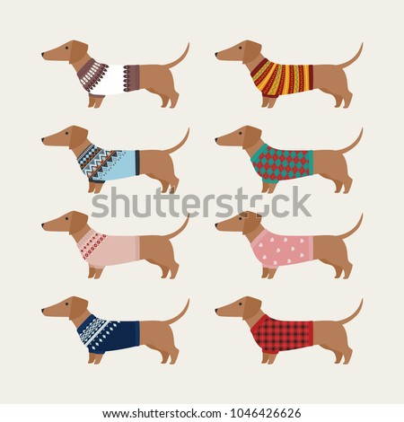 Dachshund Character Wearing Knit Sweater Various Stock Vector