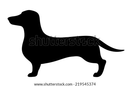 Dachshund dog. Vector black silhouette. - stock vector