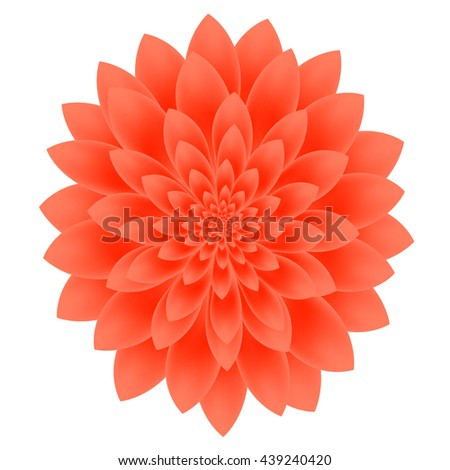 Dahlia flower isolated on white background. - stock vector