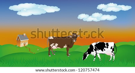 Dairy cows over summer green meadow.The rural landscape - stock vector