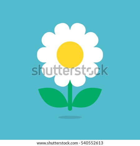 Daisy flower icon vector isolated