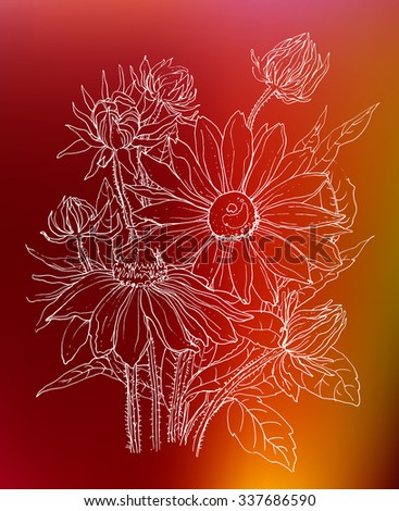 Daisy flowers in bouquet. Botanical outline Illustration on red background. Illustration for greeting cards, wedding invitations, and other printing projects. - stock vector