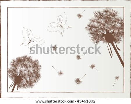 Dandelion and butterfly illustrated