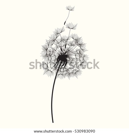 dandelion Icon Vector Illustration