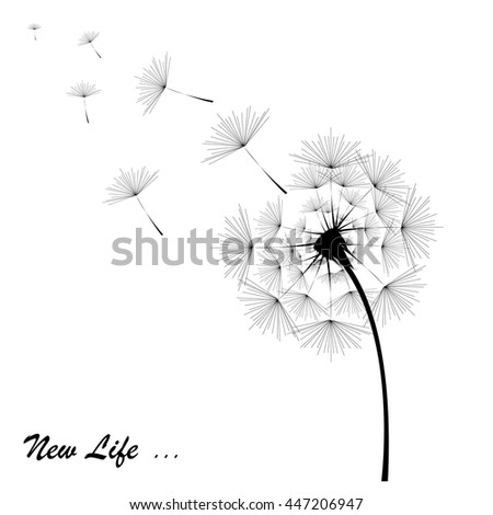 Dandelion in black with the inscription on the white background