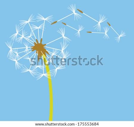 dandelion in the wind - stock vector