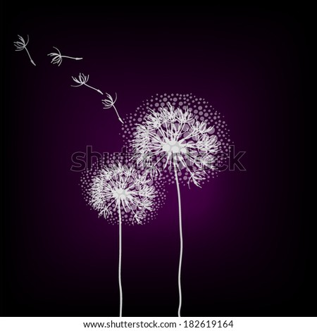 dandelion on a black background. Vector