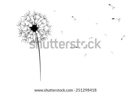 dandelion silhouette  isolated on white background