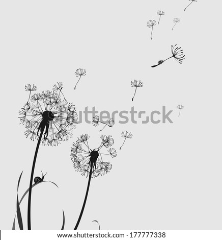 Dandelion silhouette snail and ladybug, black and white - stock vector