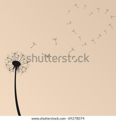 Dandelion Vector Illustration - stock vector