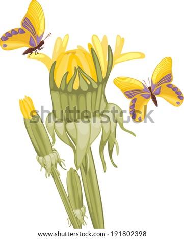 Dandelions and butterflies. Springtime background. Vector - stock vector