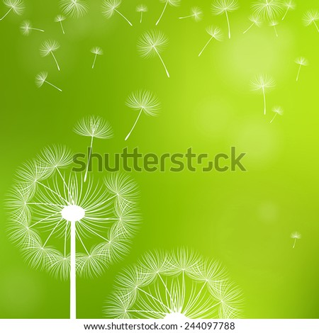 dandelions and seeds on a green background - stock vector