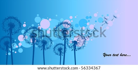 dandelions on blue background - stock vector