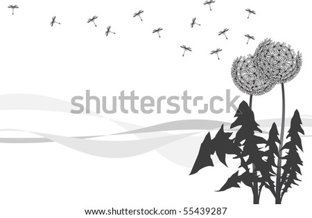 Dandelions with seeds in flight being dispersed by wind. - stock vector