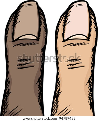 Dark and light-skinned versions of a human thumb isolated over white - stock vector