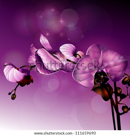 dark pink orchid flower in horizontal composition - stock vector