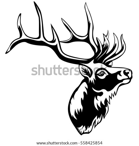 Vektor Rehbock Hirsch 4033966 furthermore 186406872051708348 moreover Deer Antlers also Stock Vector Vector Hand Sketched Drawing Illustration Of A Moose Or  mon European Elk Done In Black And White as well Search. on deer antler clip art