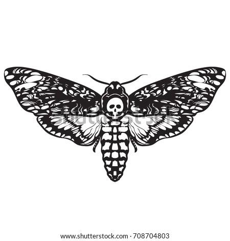 Deathshead Hawk Moth Black White Halloween Stock Vector 708704803 ...