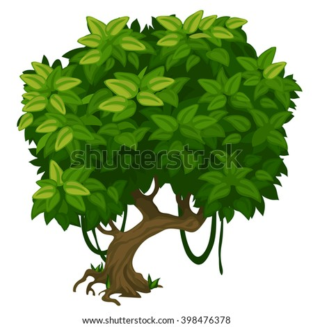 Deciduous tree in the Park. Landscaping and wildlife. Vector illustration. - stock vector