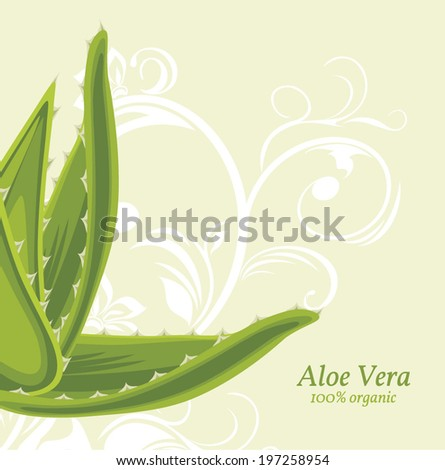 Decorative background with aloe vera. Vector - stock vector