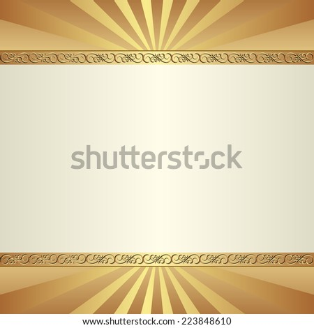 decorative  background with ornamental border - stock vector