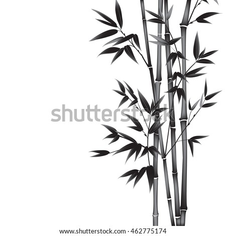 Decorative bamboo branches isolated on white background.
