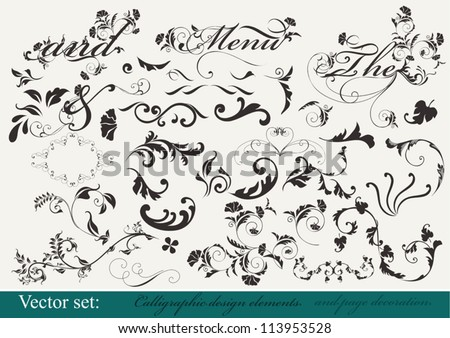 Decorative elements for  your design. Calligraphic vector - stock vector